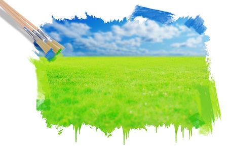 Green grass against a blue sunny sky photo