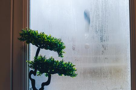 Planta de casa verde frente a la ventana de niebla. Fondo de condensación de gotas de agua de rocío sobre el vidrio, la humedad y la niebla vista cercana. Fuera de la casa, mal tiempo lluvioso.