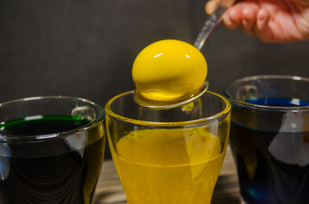 Transparent glass cups with colored water. The process of coloring eggs for Easter concept. Water mixed with dry paint in a glass. A human hand taking out a yellow egg with a spoon.