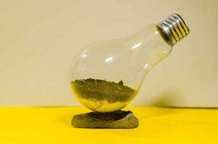 the process of making terarrium plant in light bulb. future mini garden in glass Zdjęcie Seryjne