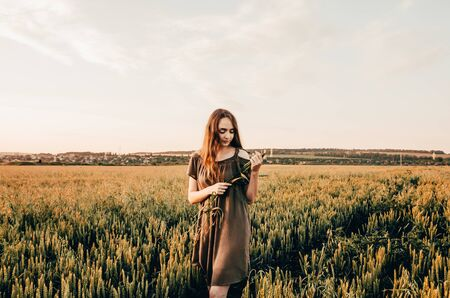 young woman ia making a wreath and is standing in golden wheat field. feel the nature concept Imagens