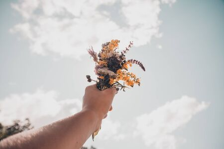 hands holding a bouquet of flowers with green field on background. traveler concept