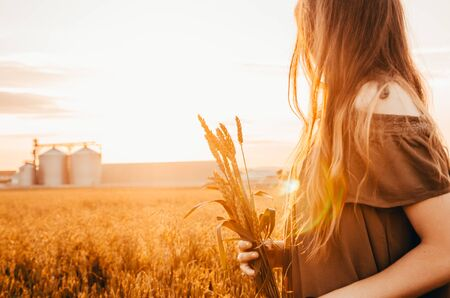 woman in dress stands in meadow with golden wheat in her hands during sunrise