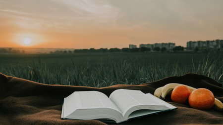 open bible on sheets and fruits at sunrise  with city on background . morning useful food .