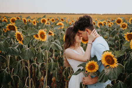 young couple kissing in a sunflower field 스톡 콘텐츠