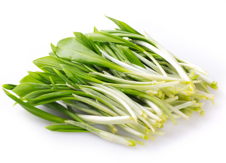 fresh ramson isolated on white background
