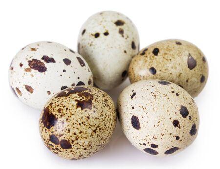 huevos de codorniz aislados sobre fondo blanco Foto de archivo