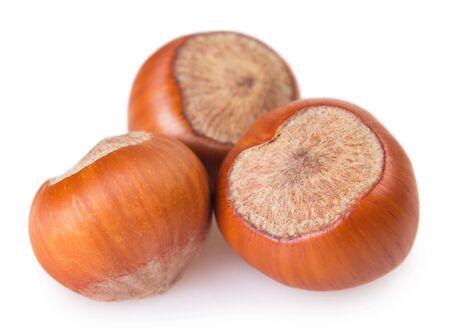 raw hazelnut isolated on white background closeup