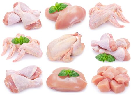 collection of raw chicken isolated on white background