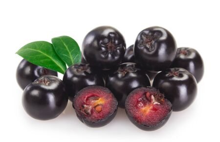 fresh chokeberry isolated on white background closeup Zdjęcie Seryjne