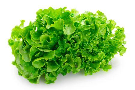 fresh lettuce salad isolated on white background closeup Zdjęcie Seryjne