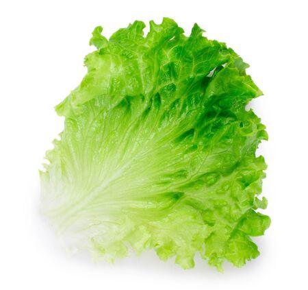 fresh lettuce salad isolated on white background closeup 스톡 콘텐츠