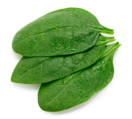 fresh spinach isolated on white background closeup 스톡 콘텐츠