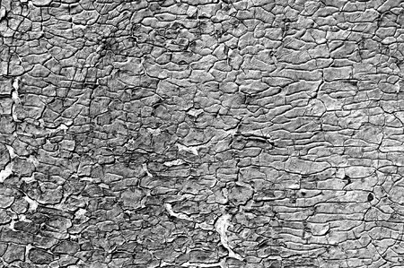 chipping: Old dense cracky paint. Texture or background.  Stock Photo