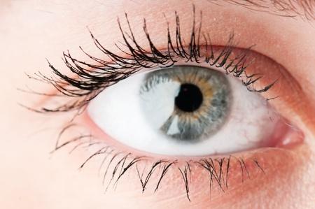 Human eye. macro shooting  photo
