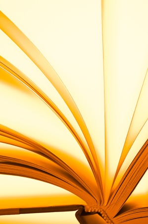 prose: Pages of a book  Stock Photo