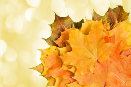 Autumn leaves  with yellow lights in the background  photo