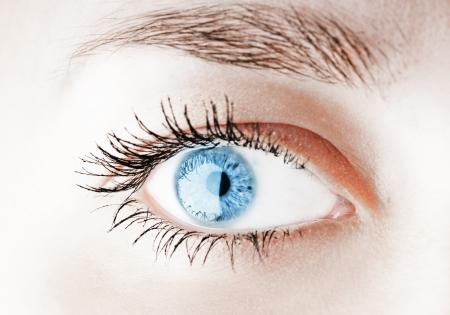 Blue human eye. macro shooting photo
