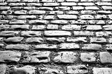 sepia cobblestone in Prague photo