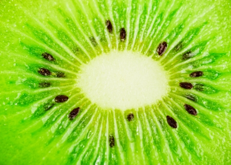 close up of a healthy kiwi fruit photo