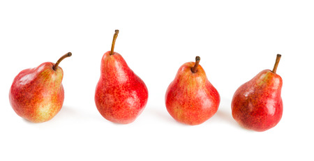 four red pears on white  photo