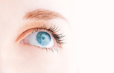 Female eye with long eyelashes looking up close up photo