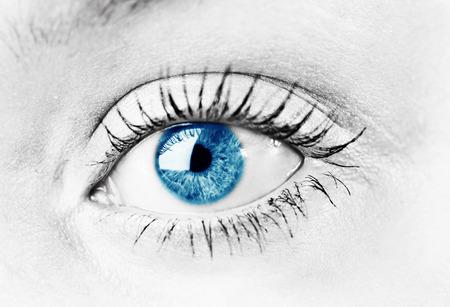 shinning light: Human blue eye. macro shooting Stock Photo