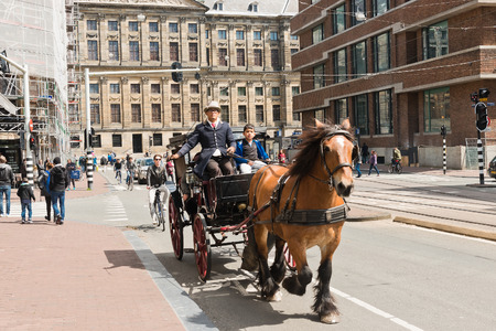 horse pull: AMSTERDAM, NETHERLANDS - JUNE 01, 2015: Horse drawn carriage in a street in the historical centre of Amsterdam, Netherlands. Editorial