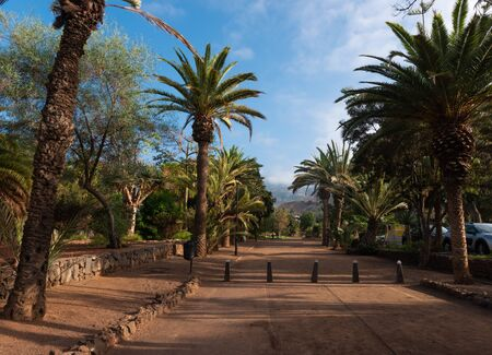 the Taoro Parque a large leisure park over the old town of Puerto de la Cruz on Tenerife. Spain Фото со стока