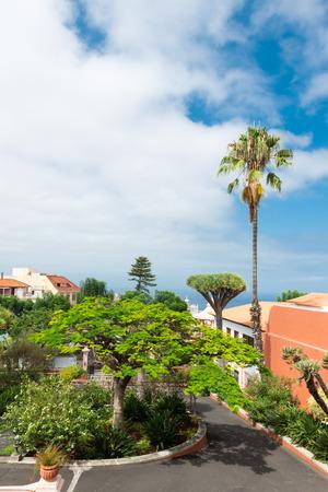 Park near Liceo de Taoro, La Orotava, Tenerife, Spain Редакционное