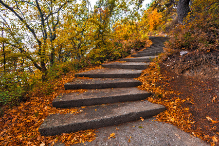 Winding concrete staircase in autumn Stock Photo