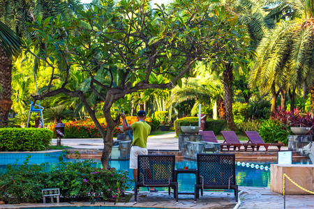The worker cleans the pool under the tree. The photo was taken in Sanya, Hainan, China.