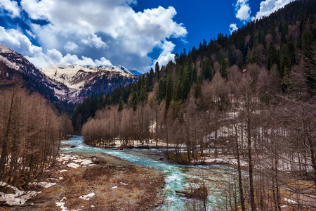 Spring melting snow in the mountains, a fast cold turquoise river flow between the forests against the background of ever green trees and high mountains. Audakhara, Relict national park of Ritsa. Abkhazia.
