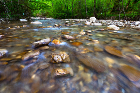 Transparent cold water of a mountain river flows between picturesque summer stones against a background of green trees close up. Forest landscape in the vicinity of Sochi, Russia. Standard-Bild