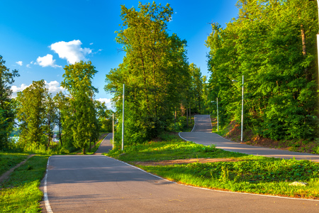 Asphalt road track turn in a sunny green forest among the colorful trees on a summer clear day with a blue sky.