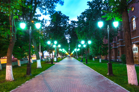 Pavement walkway at night in the green light of symmetrically lampposts, leading to the center of the frame.