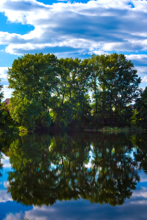 Green trees are reflected on the calm water surface of the pond along with a blue sky and white clouds in the countryside.