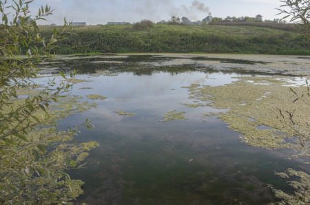 mecha: River Krasivaya Mecha Stock Photo