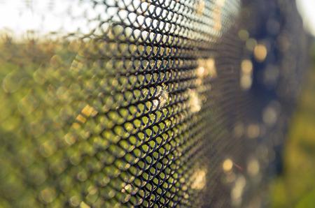 netting: