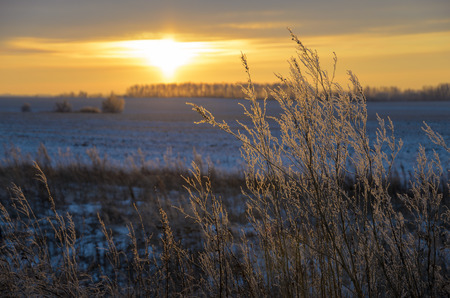 january sunrise: winter landscape Stock Photo