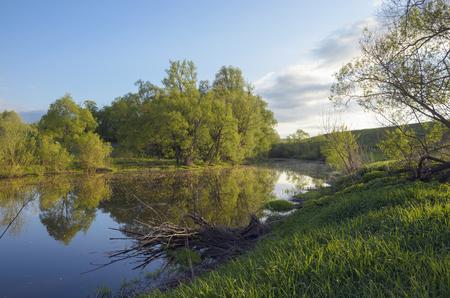 Zomer landschap met rivier
