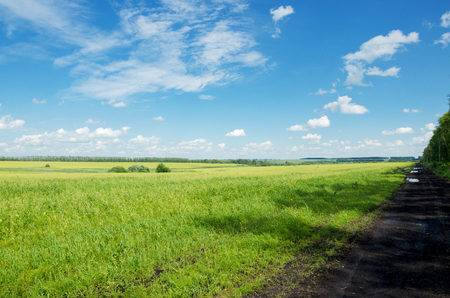 Sunny summer landscape with ground countryside road Stock Photo