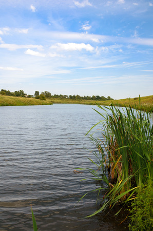Summer scene with river.River Krasivaya Mecha in Tula region, Russia.