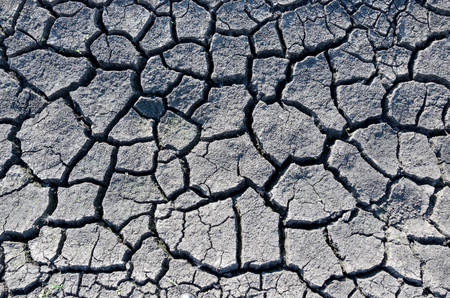 Cracked land.Parched riverbed.