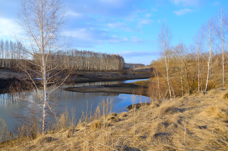 Springtime.Sunny spring colorful landscape with river and bare birches growing on the riverbank.Warm sunlight at sunset.Clouds in blue sky.Beautiful view.