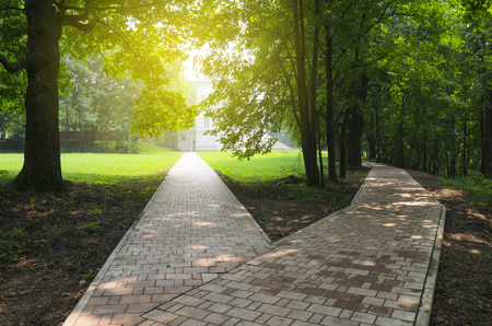 Rozwidlenie drogi w pustym parku. Słoneczny letni poranek.