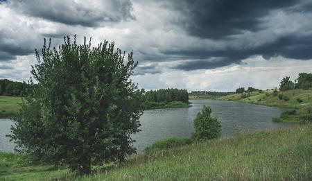 Cloudy windy summer landscape