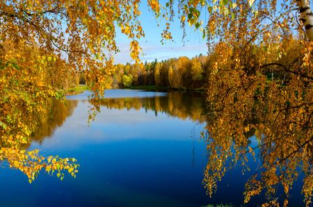 Sunny autumn landscape with pond in park and trees with yellow autumnal foliage