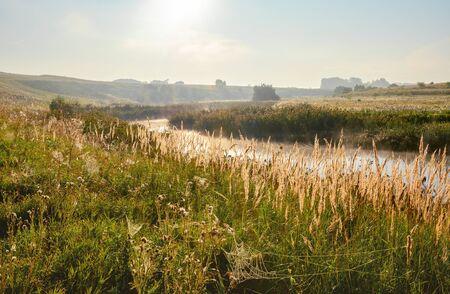 Bright sunny landscape with river