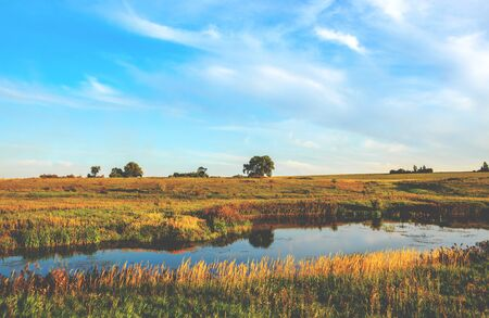 Sunny rural landscape with river and golden fields Foto de archivo
